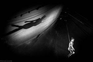Cirque© Barbara Lecomte